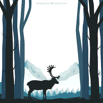 Forest silhouettes