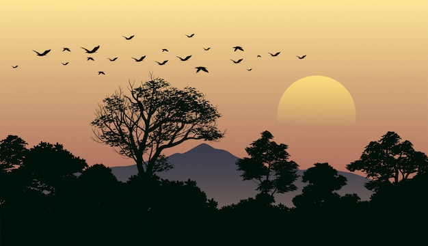 Forest sunset landscape with flying birds