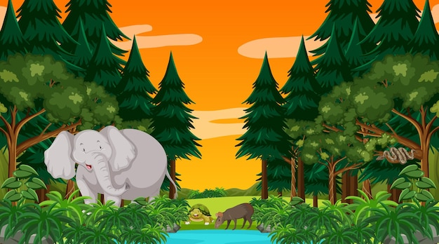 Forest at sunset scene with a big elephant and other animals