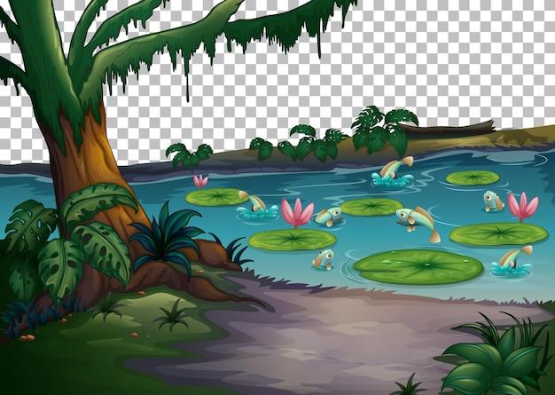 透明な背景の森の沼の風景