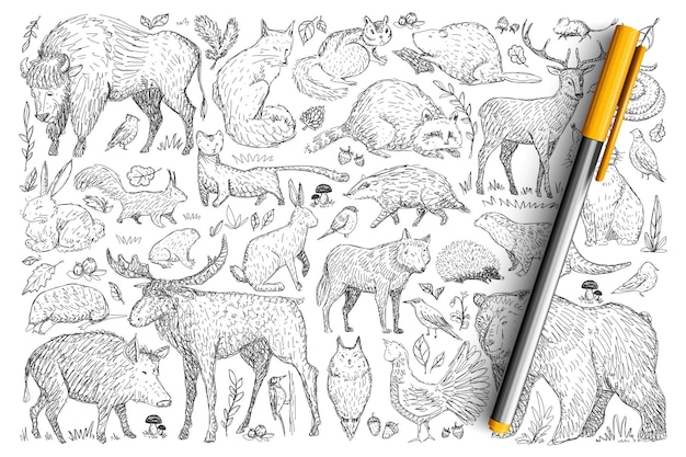 Forest wild animals doodle set. collection of hand drawn deer fox bear rabbit squirrel raccoon buffalo hedgehog living in wild nature isolated.