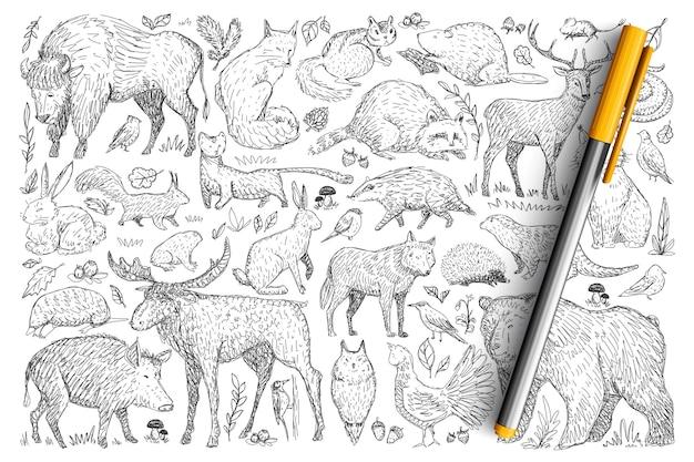森の野生動物の落書きセット。孤立した野生の自然に住んでいる手描きの鹿キツネクマウサギリスアライグマバッファローハリネズミのコレクション。