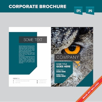 Forest and wildlife organization brochure