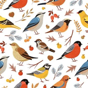 숲 겨울 새 패턴입니다. 숲 동물 배경, 평평한 눈 덮인 나뭇가지. 휴일 멋쟁이 새의 일종 잎 열매, 야생 동물 벡터 질감. 계절 그리기 패턴, 야생 겨울 새 그림