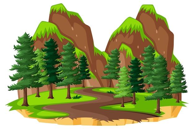 白い背景の上の自然の要素を持つ森