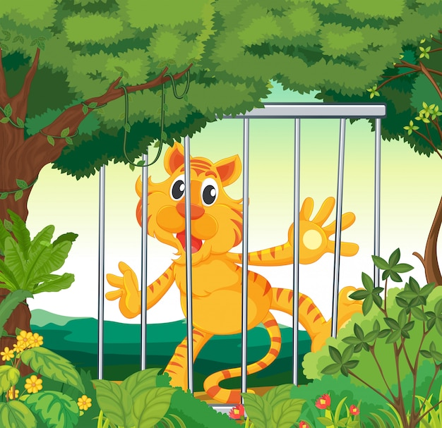 A forest with a tiger inside a cage