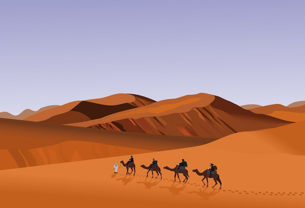 Four camel riders are hiking in the hot sun in the desert with sand mountain background.