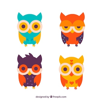 Four colored owls in flat design