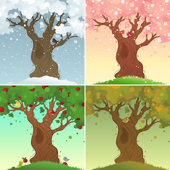 Four days in the life of the apple tree vector illustration