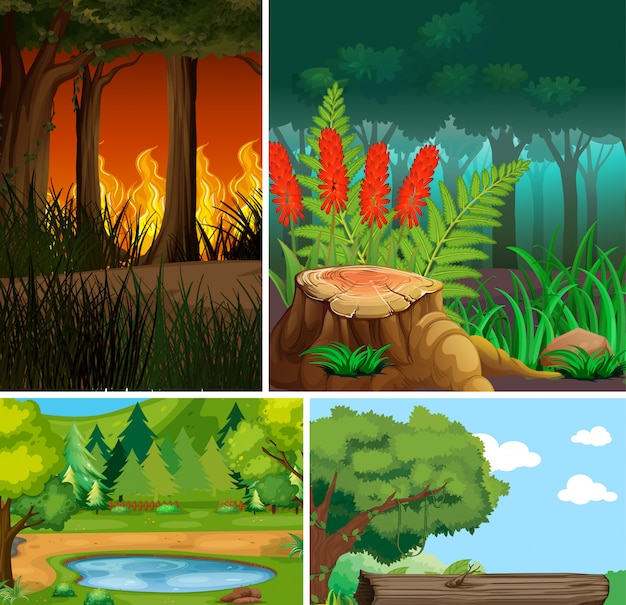 Four different nature scene of forest cartoon style and nature disasters