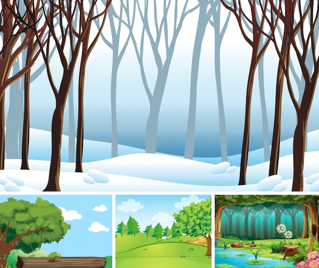 Quattro scene di natura diversa in stile cartone animato foresta