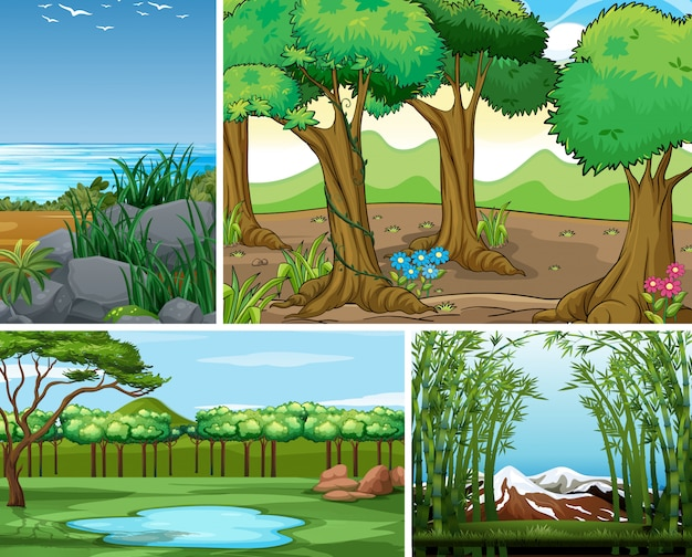 Four different nature scene of forest and swamp cartoon style
