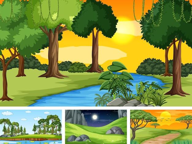 자연 공원과 숲의 네 가지 장면
