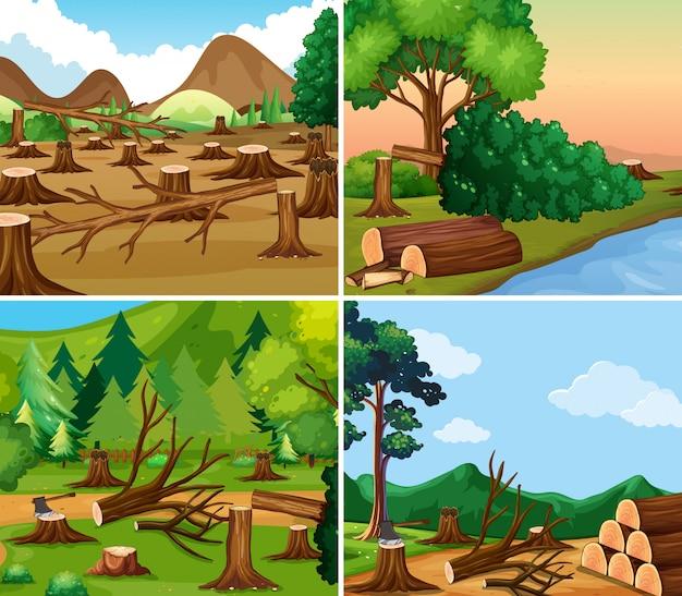 Four different scenes of deforestation