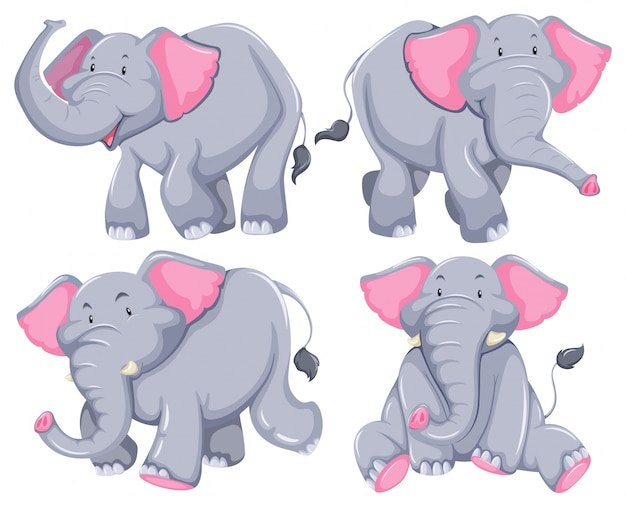 Четыре слона в разных позах