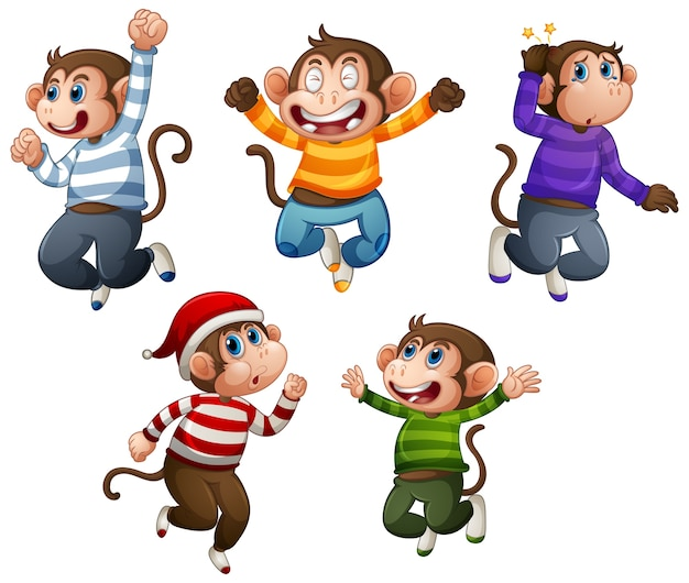 Four monkey wear t-shirt in jumping pose isolated on white background