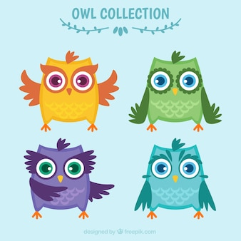 Four owl characters in flat design