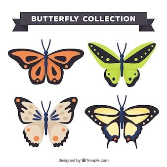 Four pretty butterflies