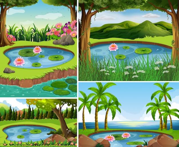 森の中に池がある4つの場面