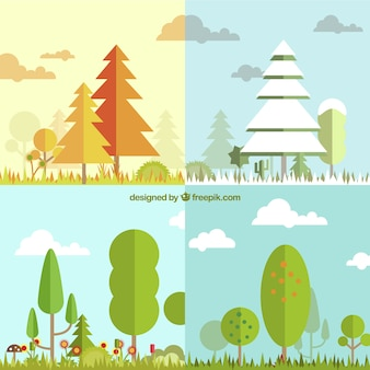 Четыре времени года с дерева ландшафта