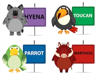 Four types of wild animals and signs