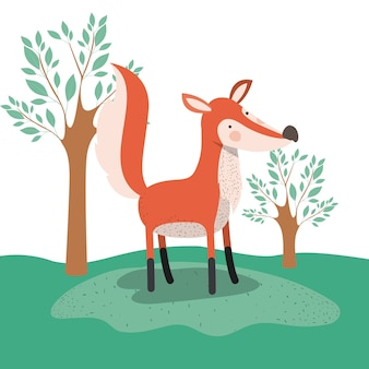 Fox animal caricature in forest