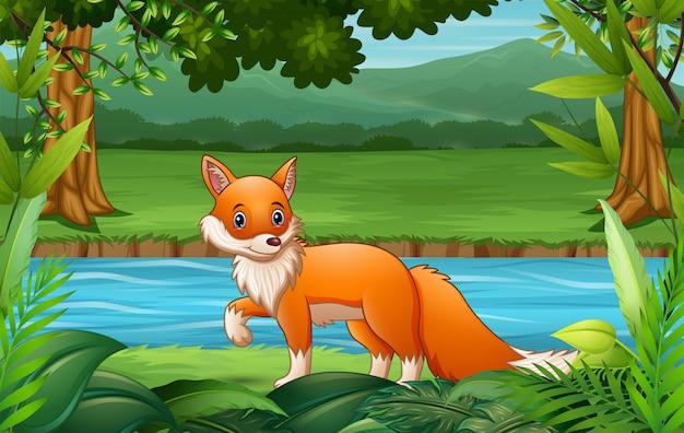 Fox cartoon walking in the nature