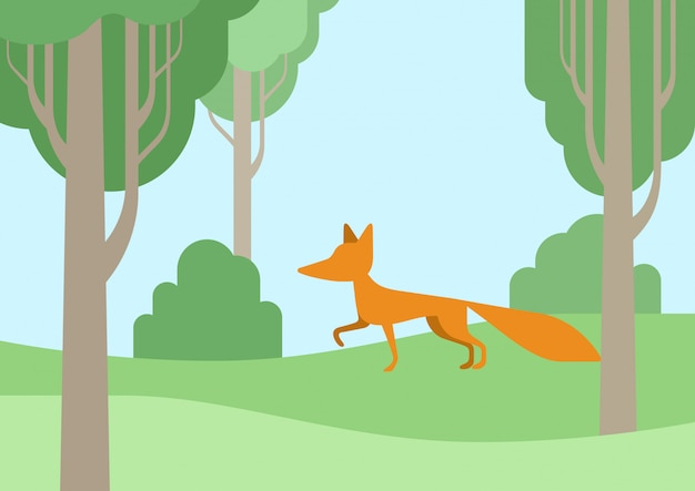 Fox flat cartoon in the forest.