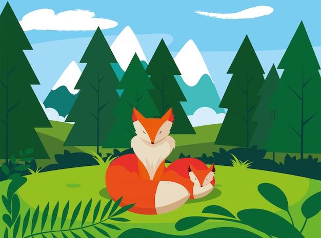 Fox mammal happy autumn season flat