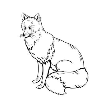 キツネの概要図。動物園の森の動物のスケッチ