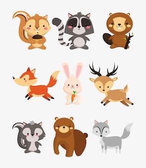 Fox rabbit deer squirrel raccoon beaver skunk and bear icons ima