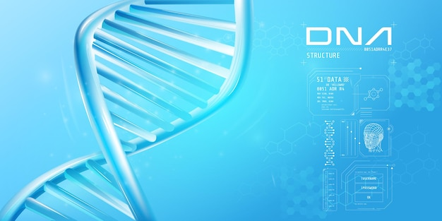 Fragment of double helix dna with infographic elements
