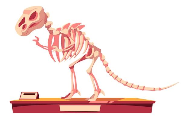 恐竜の骨格の断片