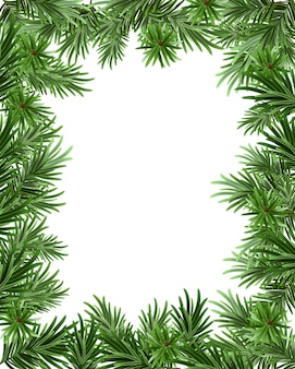 Frame background of fir branches for christmas card. greeting card template