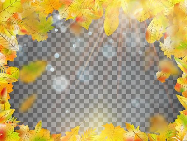 色鮮やかな紅葉で構成されるフレーム。