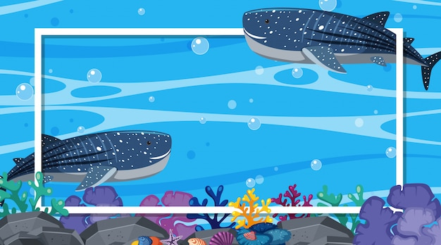 Frame design with whalesharks swimming in the ocean