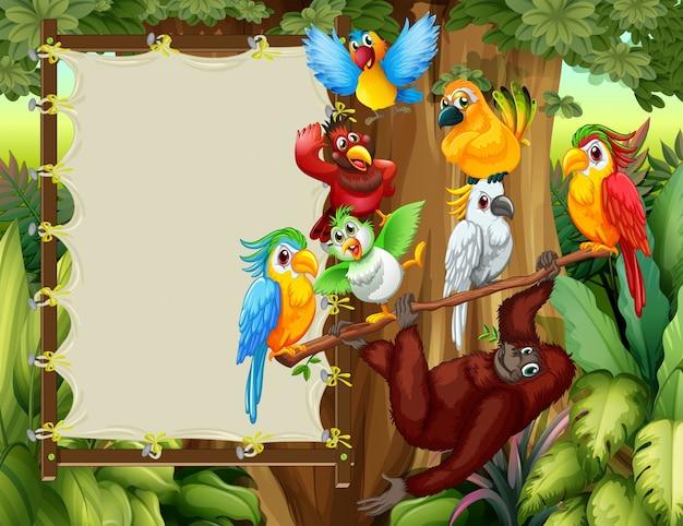 野生の鳥と猿のフレームデザイン