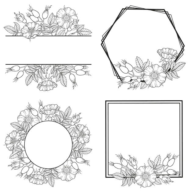 Frame of dog-rose flowers, branches and leaves.