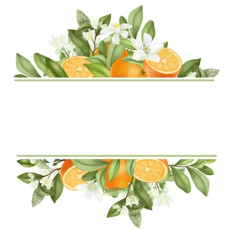 Frame of hand drawn blooming orange tree branches, flowers, oranges on white background
