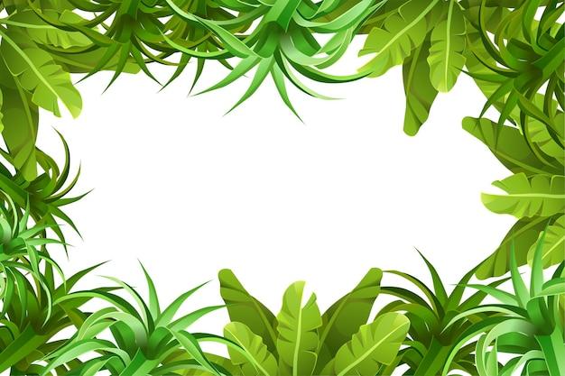 Frame jungle vegetation.