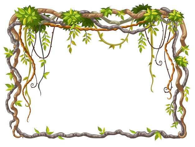 Frame of liana branches and tropical leaves