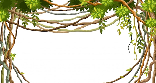 Frame of liana branches and tropical leaves.
