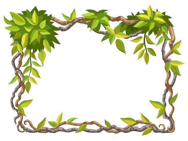 Cornice di rami di liana e foglie tropicali. Vettore gratuito