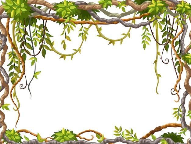 つる植物の枝と熱帯の葉のフレーム。