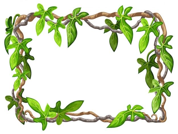 Рамка из ветвей лианы и тропических листьев.