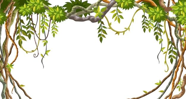 リアナの枝と熱帯の葉のフレーム。