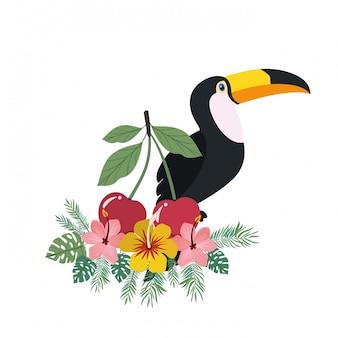 큰 부리 새와 여름 꽃의 프레임