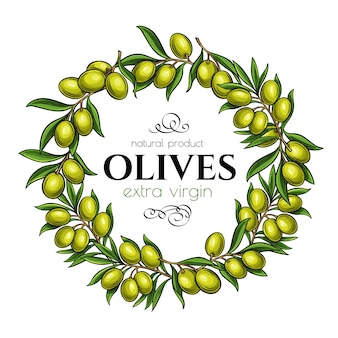 Frame page  with branches olives