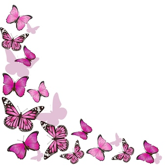 Frame of pink butterflies in flight isolated