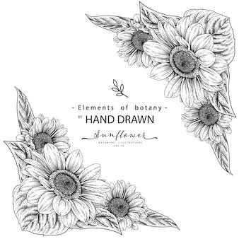 Frame of sunflower drawings.